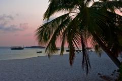 Malediven-2010-1-von-1