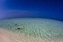 Malediven-2010-Embudhu-OW-10-von-32