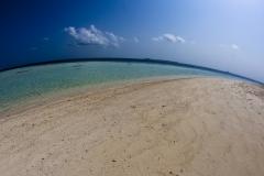 Malediven-2010-Embudhu-OW-9-von-32