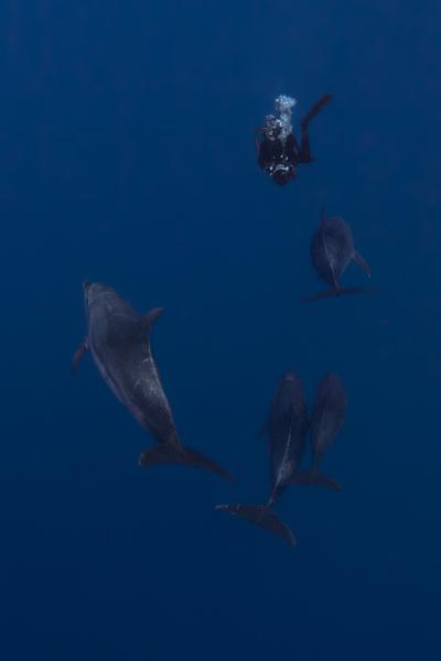 Französisch Poynesien-Südsee-110