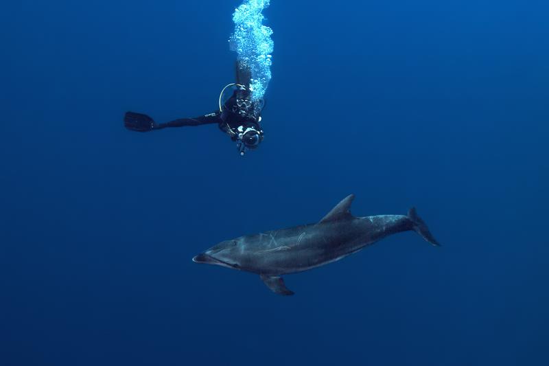 Französisch Poynesien-Südsee-112