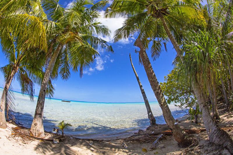 Französisch Poynesien-Südsee-169
