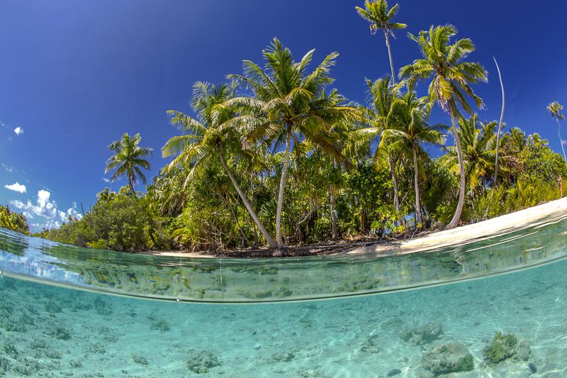 Französisch Poynesien-Südsee-171