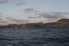 Isla Guadalupe-Socorro T70A8408